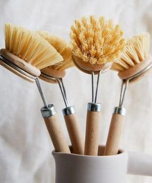 Dishbrushes